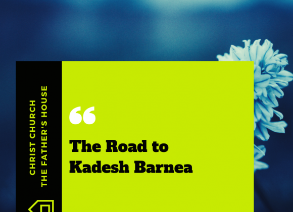 The Road to Kadesh Barnea